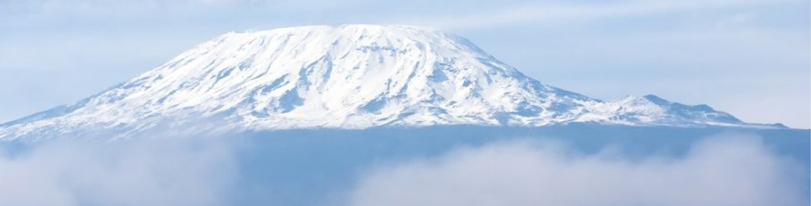 WHO WANTS TO SUMMIT KILIMANJARO WITH TREK FOR BIG CATS?